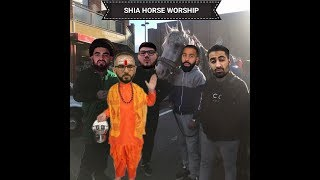 SHIA HORSE WORSHIP EXPOSED: SPEAKERS CORNER