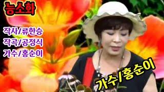 #능소화#가얏고사랑#백제사랑#해운대엘레지 /가수홍순이
