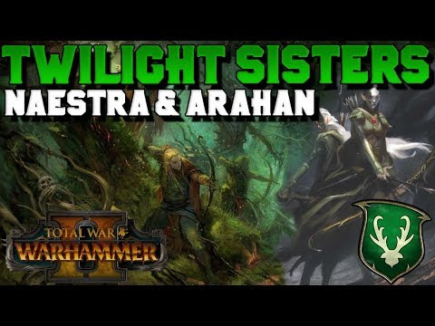 "The Twilight Sisters: Naestra & Arahan (Wood Elf Legendary ""Lord"") 