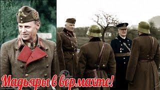 """Мадьяры на стороне Вермахта"""". Венгрия и Дания во Второй Мировой Войне- военная история"""