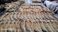 Incredible Dry Fish Market   Biggest Dry Fish Market In Gazipur Bangladesh