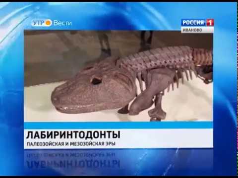 Индивидуалки метро рязанский проспект анальный секс