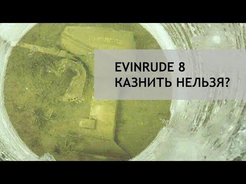 EVINRUDE 8. Казнить нельзя помиловать!
