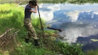 Сосновое озеро, ковровое болото (Западная Сибирь) - измеряем глубину