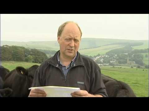 Animal Health, Cattle Health Declarations