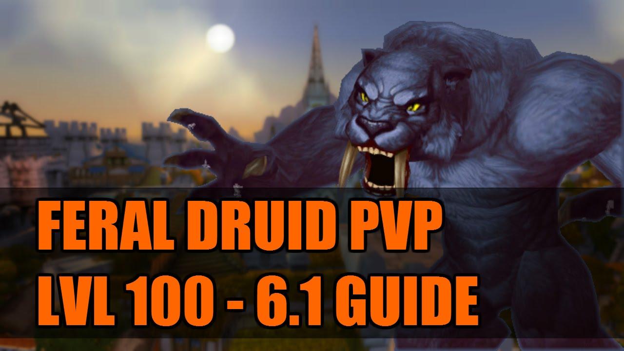 WoD 6 2 Feral Druid PvP Guide: Talents/Glyphs/Macros