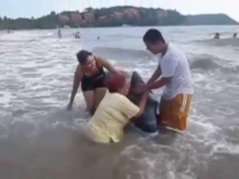 Vídeos de risa. Revolcones en la playa.