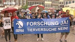 461.000 Tiere in Laboren - Baden-Württemberg trauriger Spitzenreiter