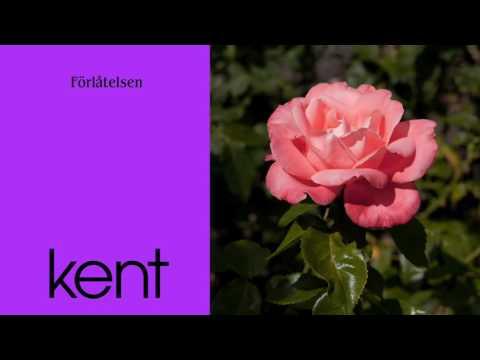 Kent - Förlåtelsen (Official Audio)