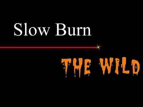 The Wild - Slow Burn ( lyrics )