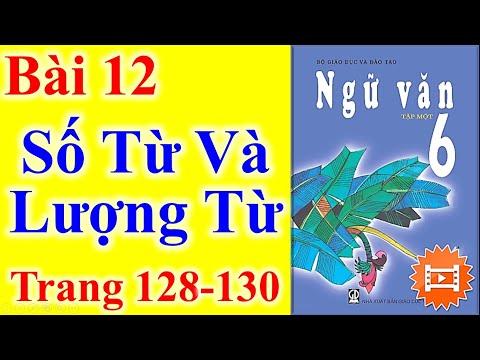 Ngữ Văn Lớp 6 Bài 12 – Số Từ Và Lượng Từ – Trang 128 - 130