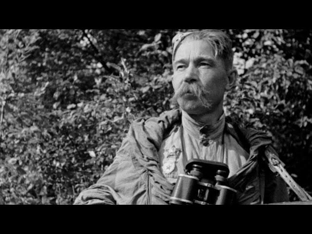 Курская битва – Песни военных лет – Лучшие фото