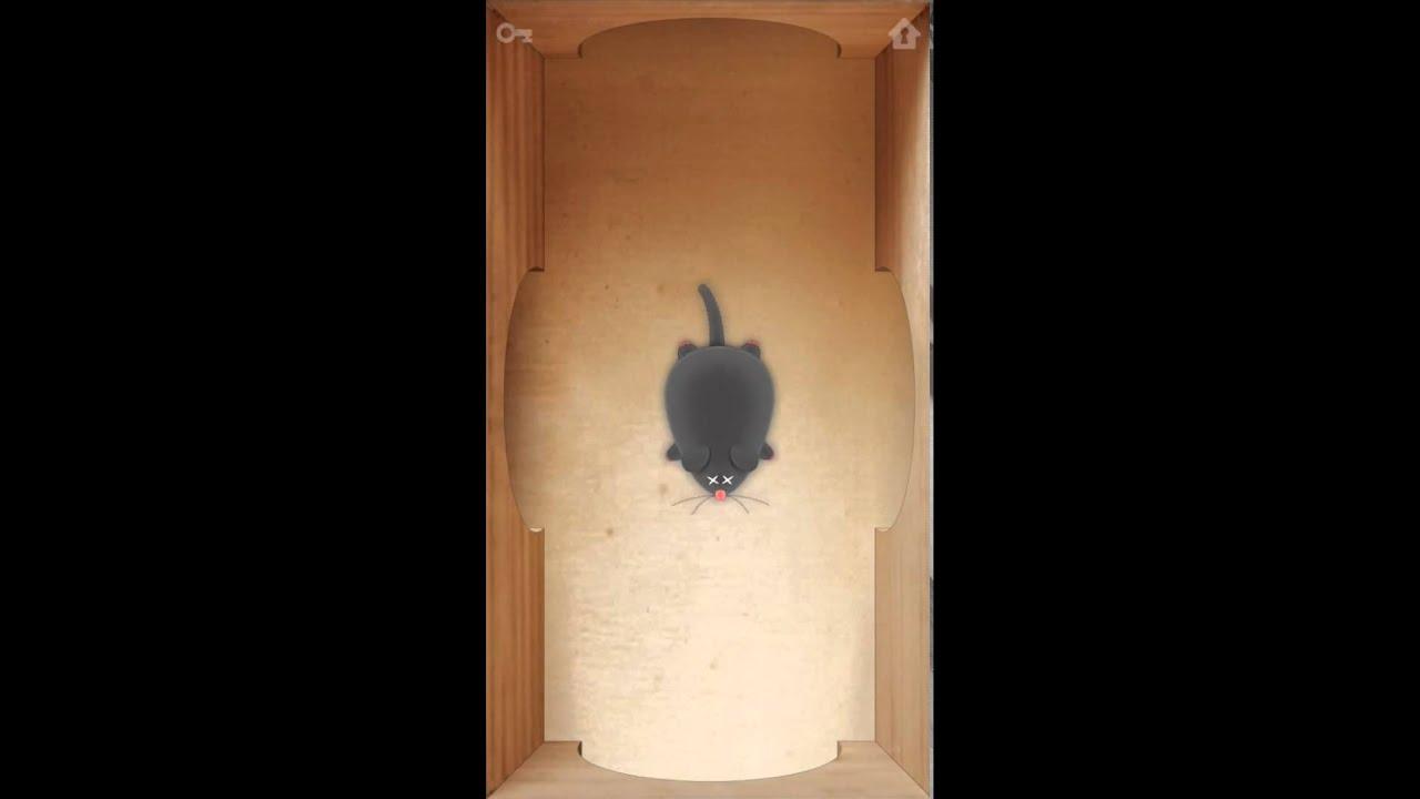 CAT ALONE2 - Cat Toy