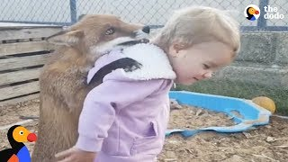 Kids Rescue Animals: Kids Go Above And Beyond To Rescue Animals | The Dodo Best Of