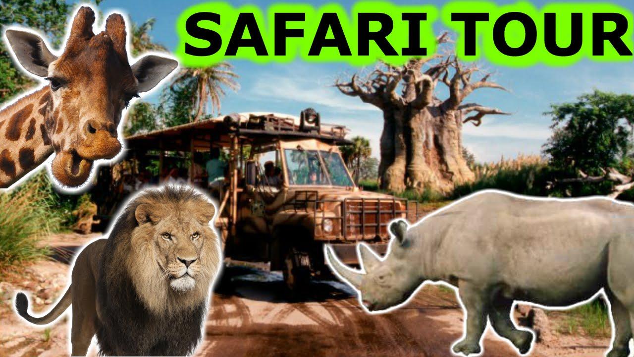 DISNEY WORLD KILIMANJARO AFRICAN SAFARI TOUR ANIMAL KINGDOM HD