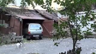 Женщина за рулем и гараж, убойная парковка