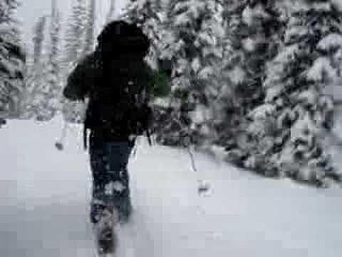 Stanley Mitchell Hut skiing