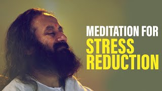 Take a Stress Reduction Break and Meditate: 20 Minute Guided Meditation with Gurudev