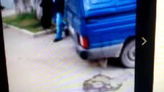 Шок.усыпление безнадзорных животных в Ставрополе! #животные#убийства#Ставрополь