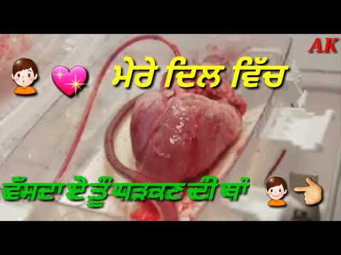 TERE TO BEGIAR  PARMESH VARMMA Dhanwad Tera Meri Zindagi Ch Aun Da Whatsapp Status