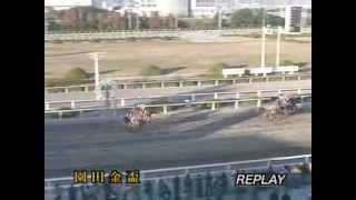 2012/12/06 園田競馬10R 園田金盃 ニシノイーグル
