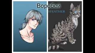 """""""Коты - Воители"""" - в облике людей!"""