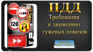 25. Дополнительные требования к движению гужевых повозок. Правила Дорожного Движения (ПДД)