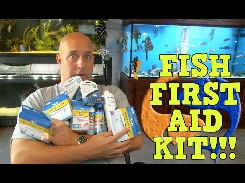 The Best Fish First Aid Kit!! Be Prepared For Anything! KGTropicals!!