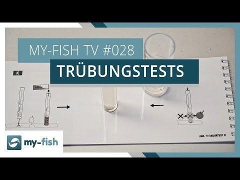 Trübungstests korrekt benutzen | my-fish TV