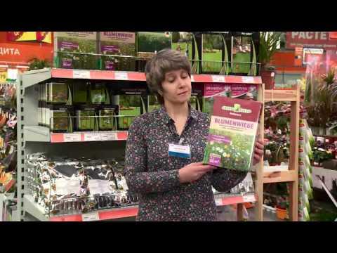 Семена для газона. Наше видео. Семена газонных трав