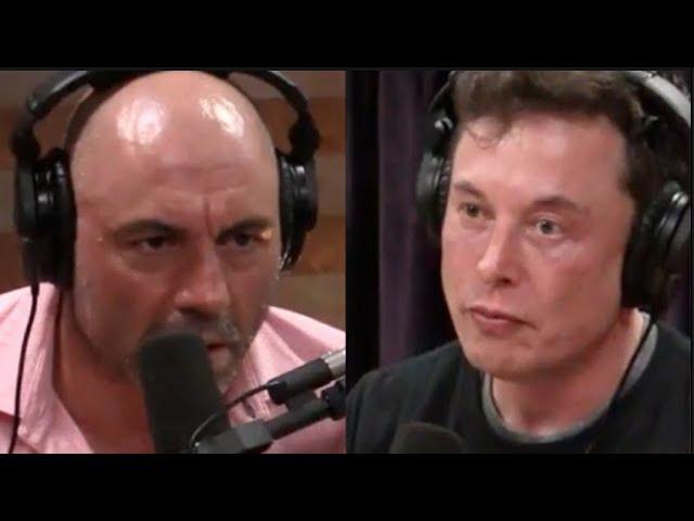 Joe Rogan - Elon Musk on Artificial Intelligence