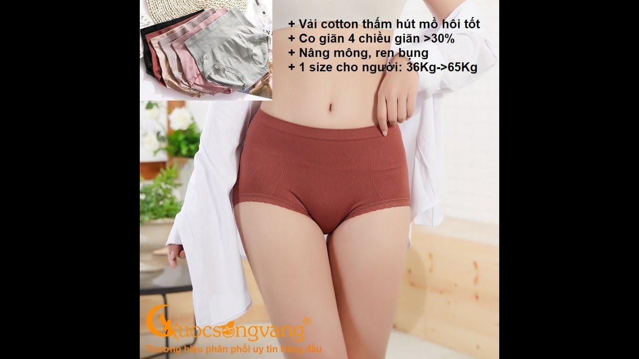 quần lót nữ ren eo quần lót cotton co giãn 4 chiều GLDL038
