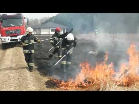 Straż pożarna: OSP Łomianki - wyjazd do pożaru trawy w Kępie Kiełpińskiej