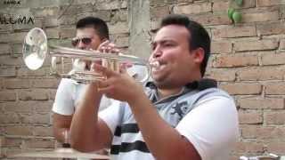 Tecateando-Banda  Paloma HD (Mexican Brass Band)