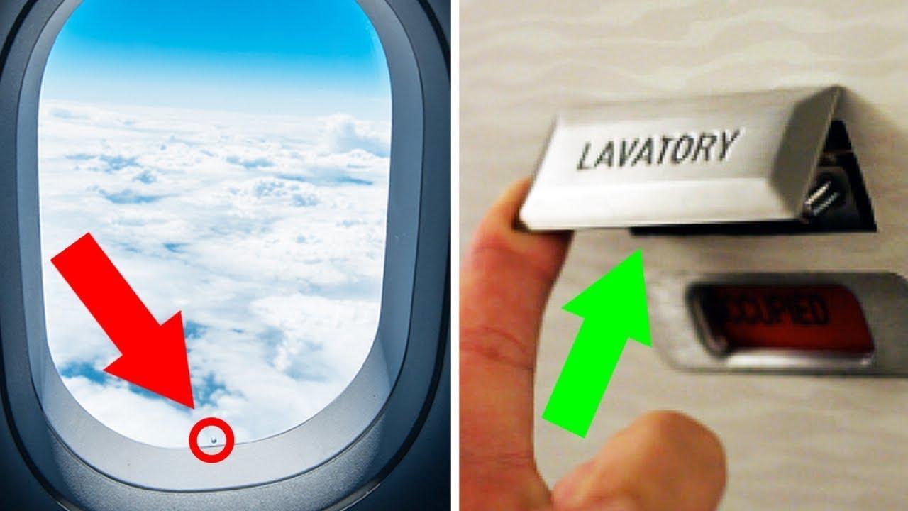 Comissarios De Bordo Entrevista: 11 Segredos Do Avião Que Os Comissários De Bordo Jamais