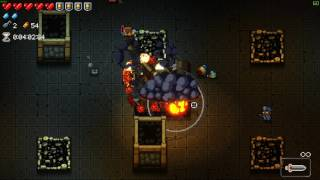 Enter the Gungeon What If: All pets/mini...