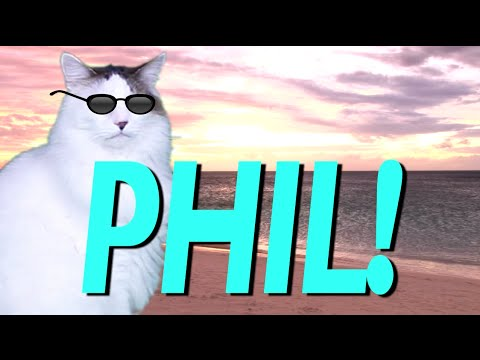 HAPPY BIRTHDAY PHIL EPIC CAT Happy Birthday Song YouTube