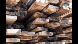Video 2 Hardwood Identification