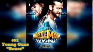 WWE Top 10 PPV Theme Songs 2013