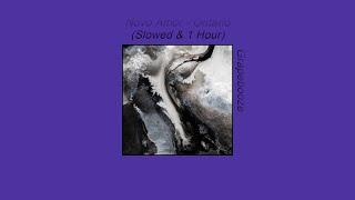 Novo Amor & Ed Tullett - Ontario (Instrumental, Slowed & 1 Hour)