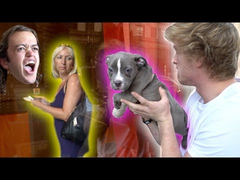 Thumbnail: I HAD TO GIVE AWAY EVAN'S PUPPY... (angry)