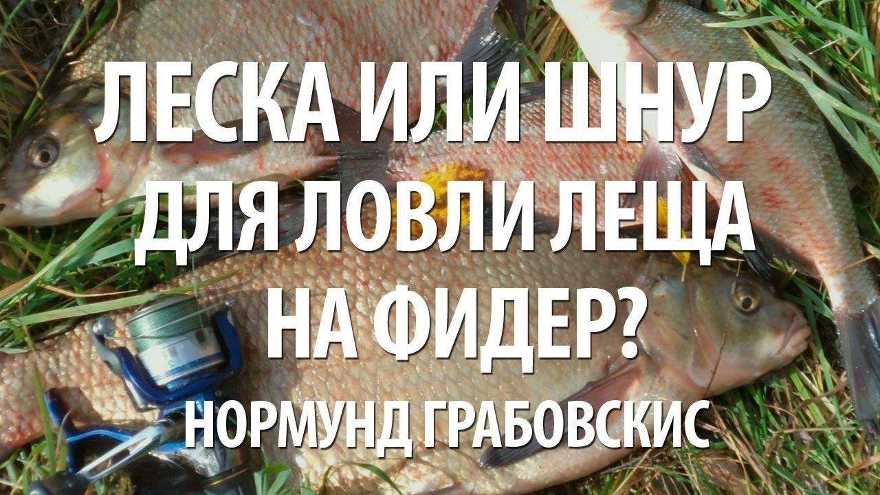 ПЛЕТЕНАЯ ЛЕСКА ИЛИ МОНОФИЛ ДЛЯ ЛОВЛИ ЛЕЩА НА ФИДЕР? - YouTube