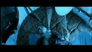 Год Змеи - Гарри Поттер