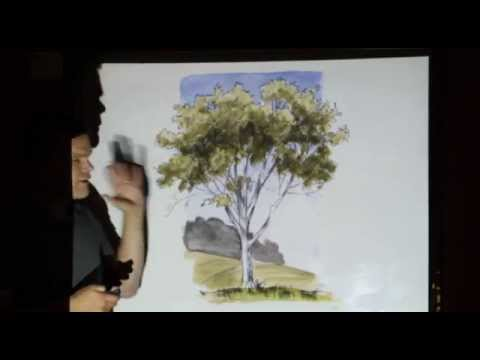 Drawing Trees by John Muir Laws