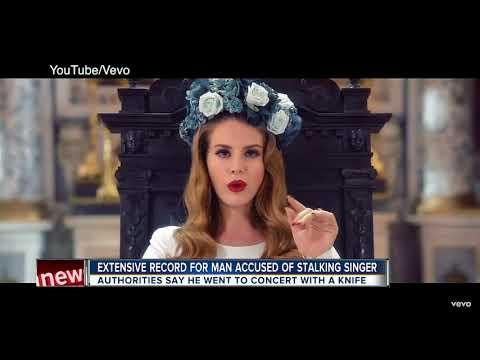 Riverview man arrested for making social media threats to singer Lana Del Rey