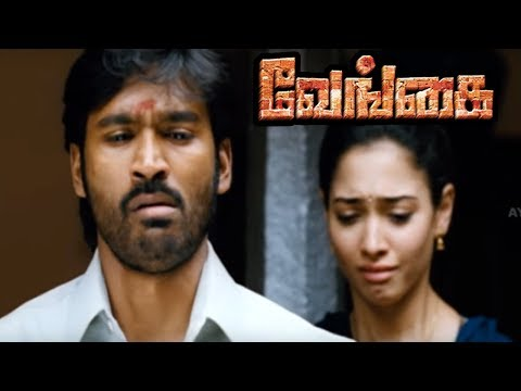 Venghai | Vengai Movie Scenes | Dhanush comes to know the true face of Tamanna | Dhanush Feels bad