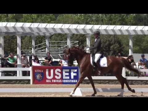 Figaro & Angela Jackson2015 5 YO Young Horse Championship