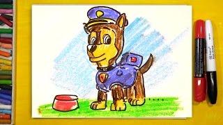 Рисую щенка Гонщика из мультика Щенячий Патруль / РыбаКит рисунки для детей