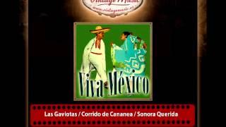 12Salvador Rangel Y Su Orquesta – Las Gaviotas / Corrido de Cananea / Sonora Querida