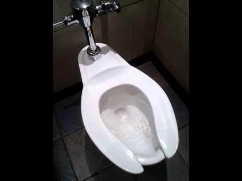 Terrific How To Fix A Toilet That Wont Flush Pictures - Image design ...
